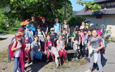 Naravoslovni dan tretješolcev na cvetočem travniku